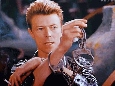 DAVID BOWIE the linguini incident] Oh David and handcuffs mmmm.