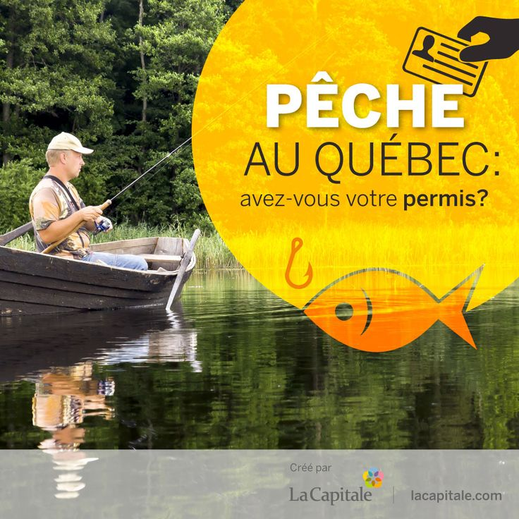 Au Québec, pour pêcher, peu importe l'espèce de poisson, une personne de 18 ans ou plus doit se procurer un permis de pêche.