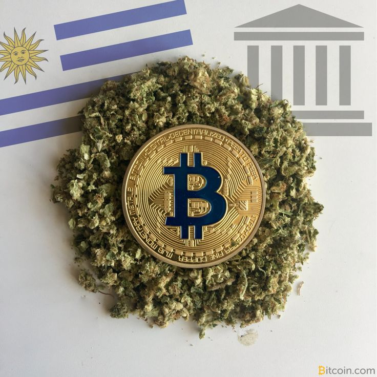 "Uruguay Urged to Provide Services to Cannabusiness – Or Bitcoin Will -                                 Former president of Uruguay's National Drugs Board, Leonardo Costa, has warned the Banco Republica Del Uruguay (BROU) it must be ""more proactive"" in providing financial services to the cannabis industry, otherwise, bitcoin will step in to take its place. As with... - https://thebitcoinnews.com/uruguay-urged-to-provide-services-to-cannabusiness-or-bitcoin-will/ Adver"