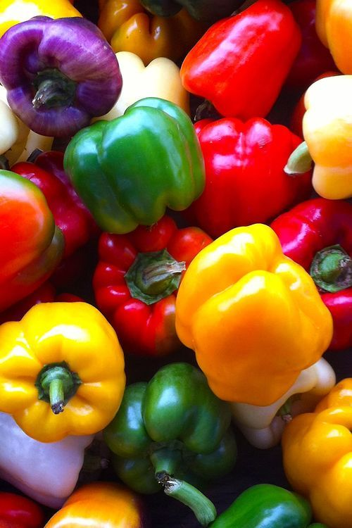 Pimientos ~~ Peppers ~~ For more: - ✯ http://www.pinterest.com/PinFantasy/flora-~-frutas-y-hortalizas-fruits-and-vegetables/