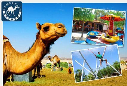 €4.50 από €9 (Έκπτωση 50%) για 1 Εισιτήριο Εισόδου στο CAMEL PARK και 1 Βόλτα με Καμήλα για Μικρούς και Μεγάλους! Στο Camel Park Mazotos, στην Λάρνακα.