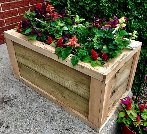 Best 25 Patio Planters Ideas On Pinterest: Best 25+ Cedar Planter Box Ideas On Pinterest
