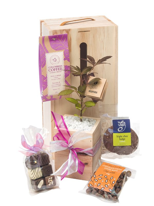Double Addiction, chocolate and coffee gifts with living tree, perfect gift idea for Fathers Day by Trees Please!