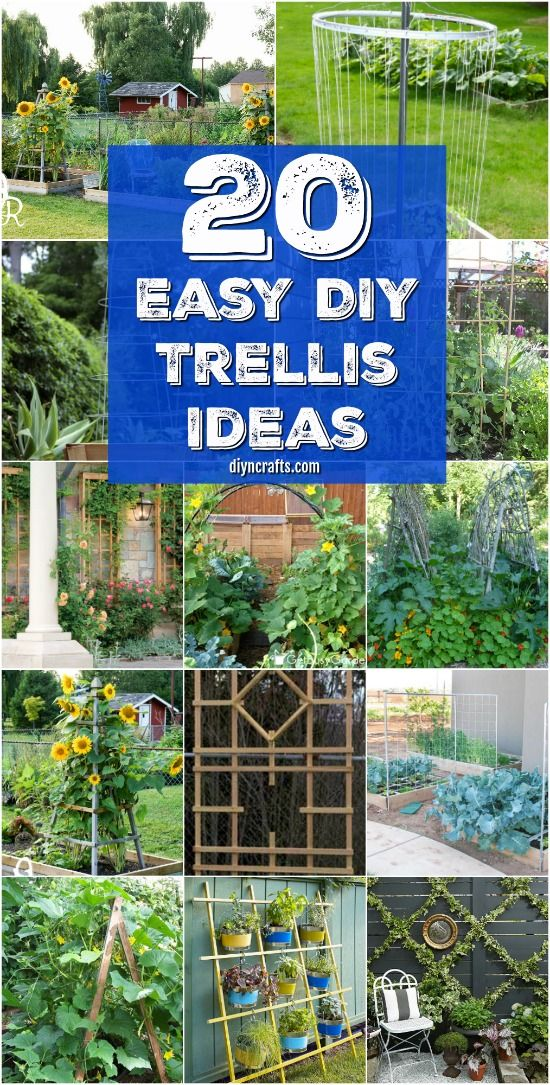 20 Easy DIY Trellis Ideas To Add Charm and Functionality To Your Garden {Easy tutorials} via @vanessacrafting