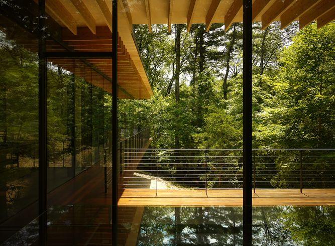 Glass/Wood house