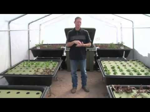 Visit this url to create your own Aquaponics System: http://f20a0ou5zhvfqo9ysqifxfsyz5.hop.clickbank.net/ Aquaponics System for $75 or less is all it takes t...