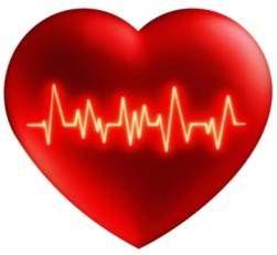Гипотеза причины аритмии сердца