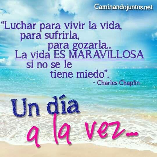 #caminandojuntos #matrimonio #consejopara2 #vida #luchar #gozar #maravillosa #nomiedo  Artículo en: www.caminandojuntos.net