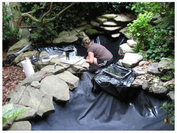 Fish Pond Liner A Temporary Or Permanent Fix A Well