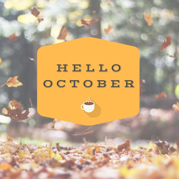Bring on the boots, scarves, tea, and everything pumpkin! It's feeling like fall here in New Jersey and I'm loving it! It's my favorite time of year and I'm enjoying every craft fair, Halloween decoration and pumpkin spice latte in sight!🍂🎃🍁