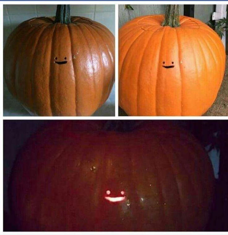 Cute pumpkin carving idea