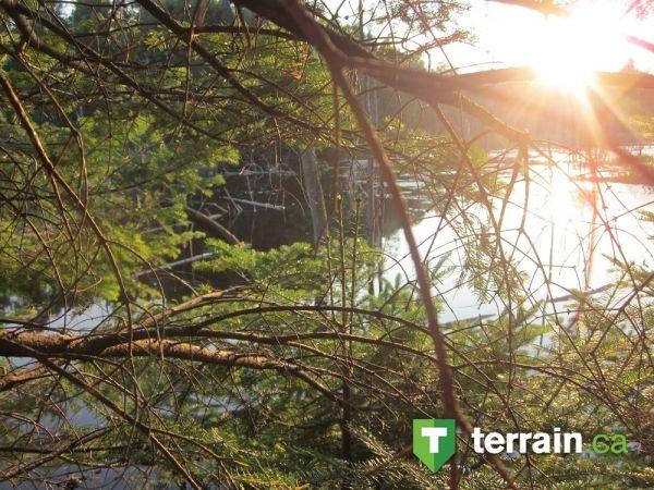 Un maginifique terrain à vendre à Rawdon dans Lanaudière. Honnêtement une des plus belle photo sur le site!