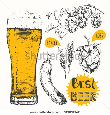 Oktoberfest set. Beer set. Vector illustration of beer and sausages. Raw material for brewing: branch of hops and ears of barley. Pub menu.