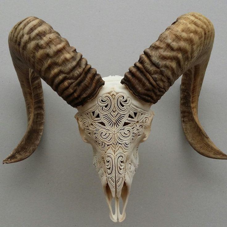 Image of Carved Ram Skull mhendi