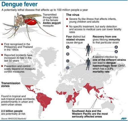 dengue fever and public health threat The public health threat of invasive species-mosquitoes and dengue posted on august 23, 2013 by misc leave a comment aedes aegypti is famous the world over for spreading dengue.