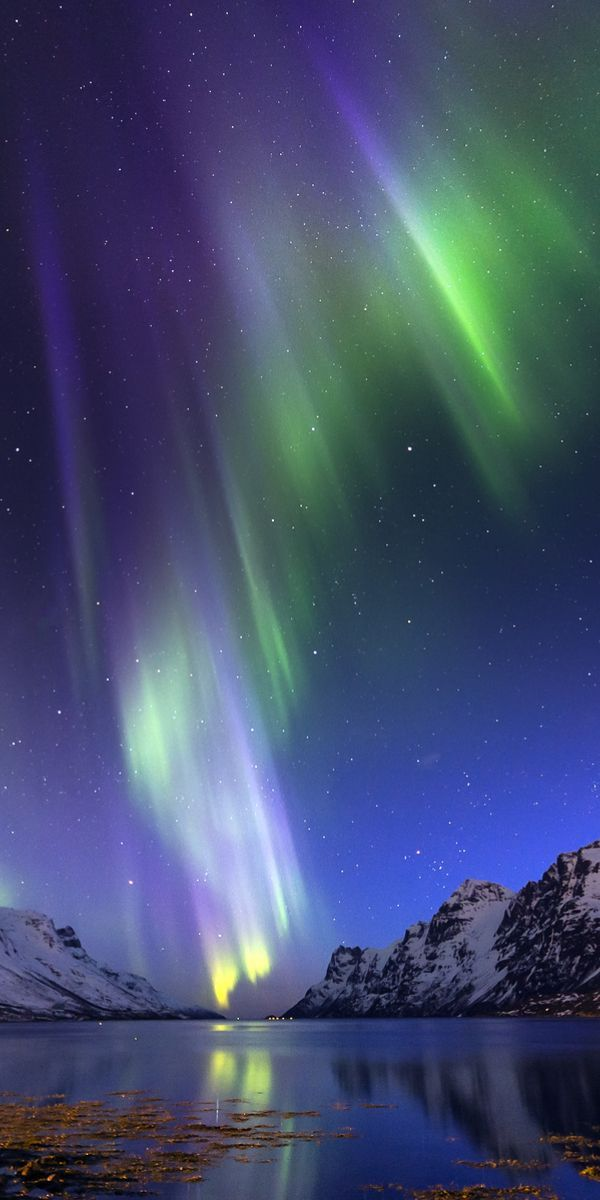 Polar lights,Tromso, Norway