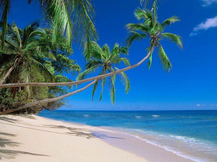 Sol, playa y arena. El lugar soñado por todos