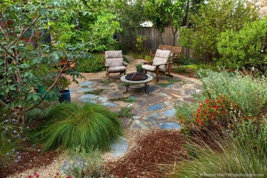 Someday My Front Yard Patio California Native Garden