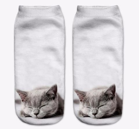 Cute Cat Photoprint Socks Collection I - Two Stupid Cats Browse through collection of these cute low cut photo print sock designed For true Cat Lovers!  Material: Synthetic Length: 19cm (stretch to  fit)