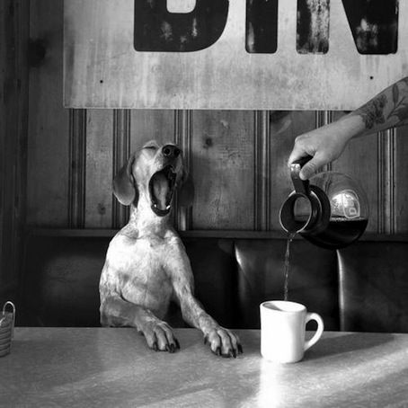Morning Coffee - that's me BFC (before coffee)