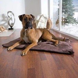 MANTA TÉRMICA Karlie, reflectante de calor para perros y gatos. Con cálida funda afelpada marrón, lámina térmica interior y fibra aislante. Ideal para el largo y frio invierno, colócala encima de la cama, suelo o en la caseta de la mascota. Disponible en dos tamaños. Pequeña: 70x50cm  (para perros pequeños y gatos). Grande: 100x70cm  (para perros grandes). Compra online en zazbuy.com. ENVIAMOS a domicilio a todas las Islas Canarias. #camaperros #perros #dogs #mascotas #pets