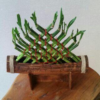 Mini treeangle+pot banana by pvc