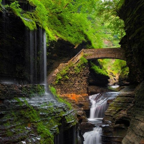 Watkins Glen, New York. Would love to see this!!Waterfal Bridges, Waterfall Bridges, State Parks, Favorite Places, States Parks, Dreams Come True, New York, Watkins Glen, Glen States