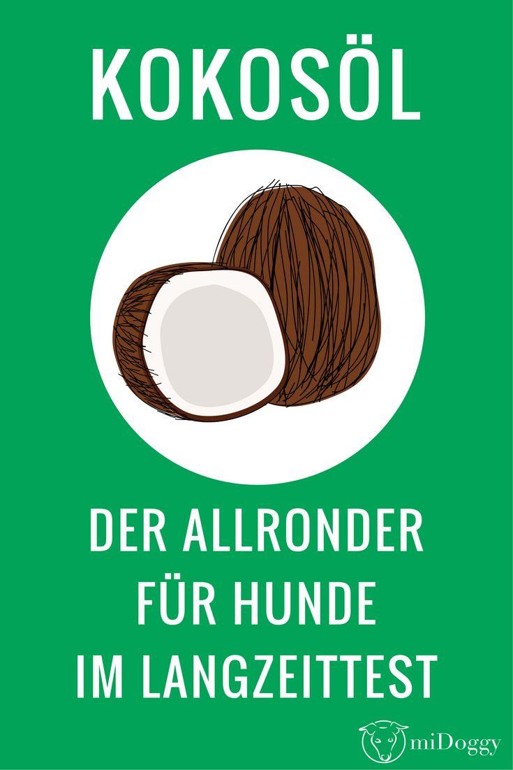 Hund | Kokosöl | Tipp | Allrounder