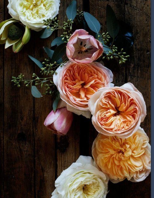 line of cut flowers