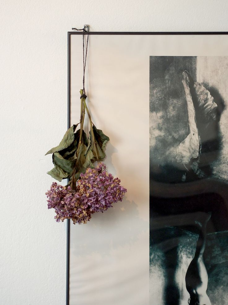 Dried flowers | Laura's home | Photo: Pupulandia