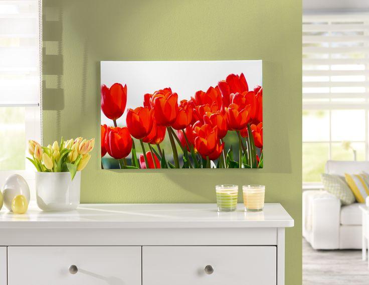 Ein Meer aus Tulpen auf einer klassischen Leinwand http://www.cewe-fotobuch.at/produkte/wanddekoration/ #diy #tulpen #wanddeko