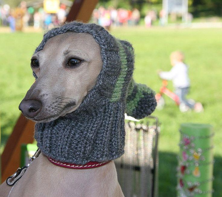 Greyhound Hat / Italian Greyhound Hat / Greyhound Snood / Dog Hat /Hand Knit ...