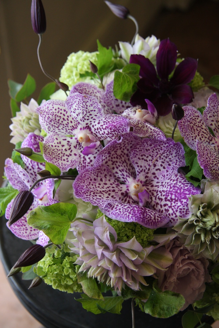 vanda,clematis and eustoma