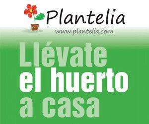 El cobre en los cultivos | Blog Plantelia
