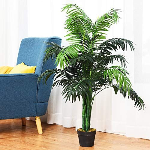 Aveyas 5ft Artificial Kentia Areca Palm Silk Tree In Plastic Nursery Pot Fake Tropical Plant For Office House Living Room Home Decor Indoor Outdoor Silk Fl Potted Trees Palm Tree Plant
