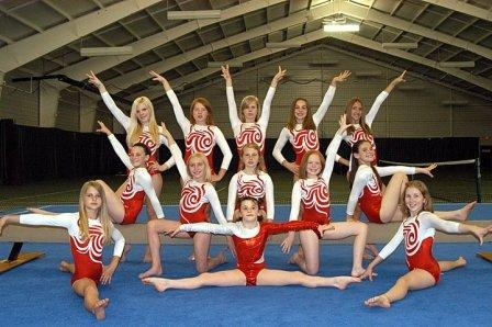 Google Image Result for http://sitmeanssit.com/dog-training-mu/columbus-ohio/files/2011/08/YMCA-gymnastics-team.jpg
