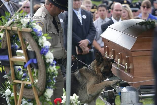 Officer Jason Ellis was ambushed...while trying to help motorists. He was set up to move some debris off of an exit ramp which posed a traffic hazard and {was} shot multiple times with a shotgun. He was the K-9 handler for the Bardstown PD in Bardstown, KY...here is his partner, K-9 Figo paying one last tribute. Forever loyal. Forever faithful.