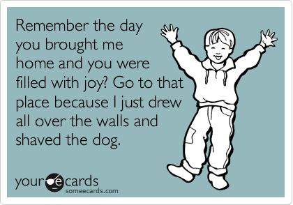 Remember the day you brought me home and you were filled with joy? Go to that place because I just drew all over the walls and shaved the dog. | Family Ecard | someecards.com