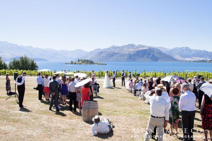 Vineyard wedding ceremony amongst the vines at Rippon, Lake Wanaka