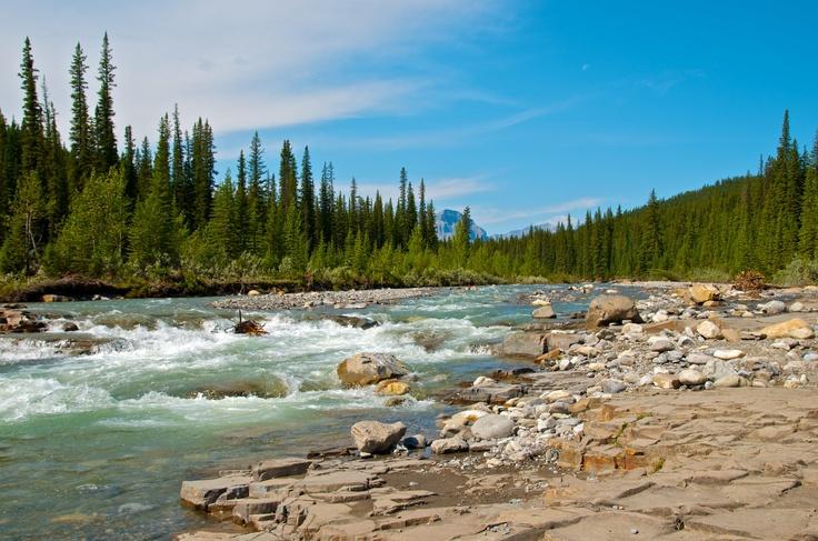 Big Horn River. David Thompson Area. Rocky Mountain House-Alberta