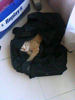 en la maleta