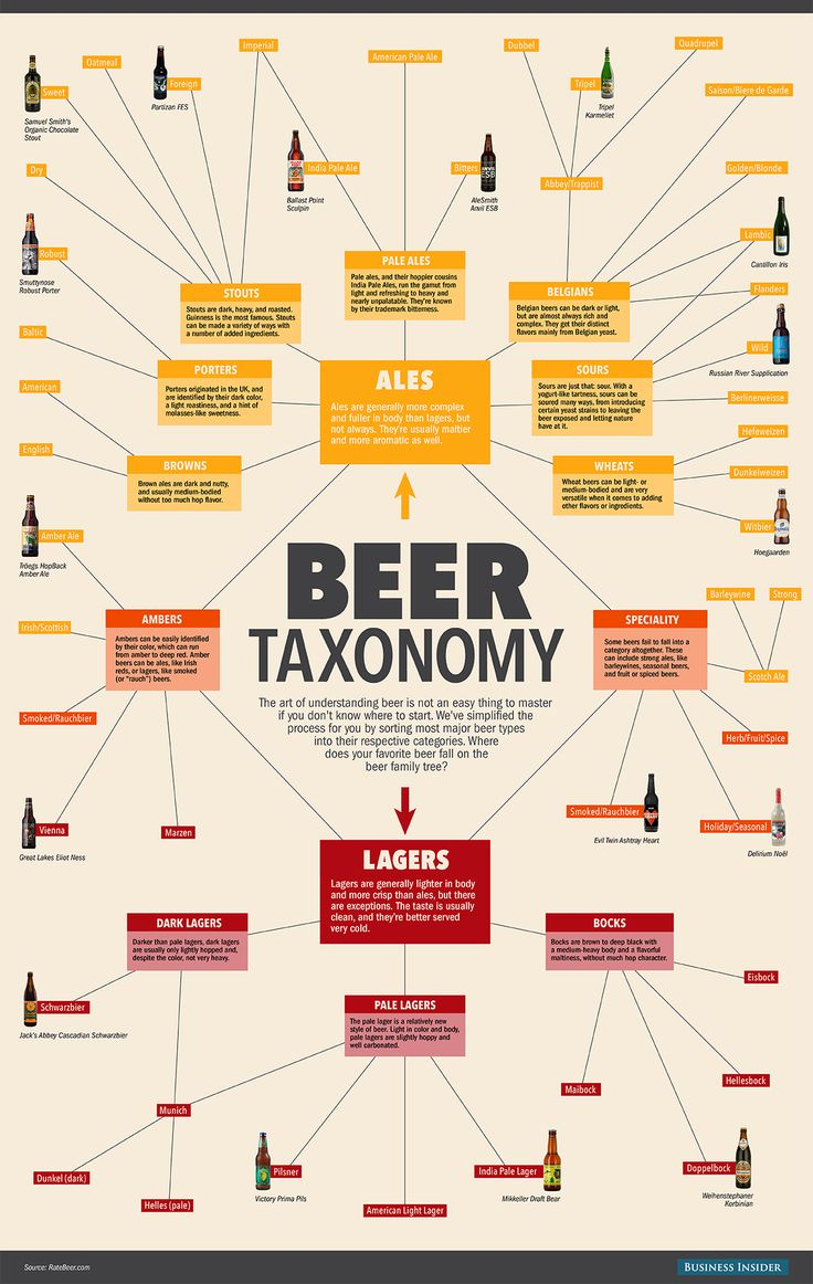[Infographic] Beer Taxonomy | There are dozens upon dozens of different styles of beer out there, from pale ales to stouts to bocks. But you don't have to taste the whole rainbow to find your favorites (well unless you really want to). This taxonomy of most of the world's major beer styles will help you put your favorite cold ones into context. Start in the center and see where each style of beer falls.