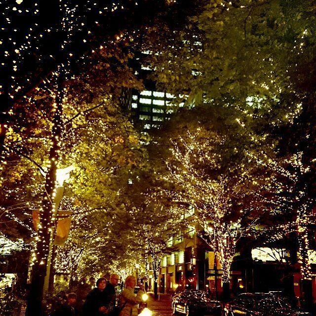 Instagram【mk381318】さんの写真をピンしています。 《丸の内のイルミネーション綺麗だった✨✨✨🎄 * #クリスマスイルミネーション #丸の内イルミネーション #イルミネーション  #イルミ #東京イルミネーション  #丸の内仲通り #丸の内 #東京 #夜景 #風景 #街 #冬 #クリスマス》
