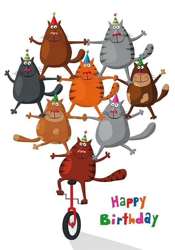 Прикольные картинки с днем рождения кот, город первого
