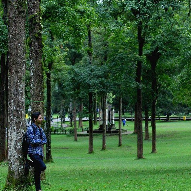 Pikiran itu sama halnya seperti payung, yang hanya bisa digunakan dengan baik jika dalam keadaan terbuka. --------------------------------- Loc. Kebun Raya Eka Karya, Bedugul, Tabanan, Bali --------------------------------- #igers #igersbali #traveling #travelgram #travel #traveler #travelphotography #instatravel #instadaily #exploreindonesia #wonderfulindonesia #explorebali #balitourism #jalanmelali #melalidibali #baliawesome #thebalibible #mybalibible #balibible #thebaliguru #baligasm…