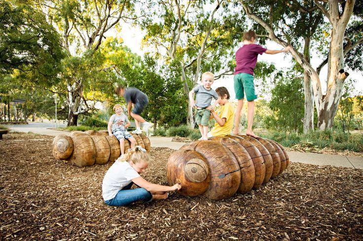 Carved timber Kupe (wood grubs) Bonython Park