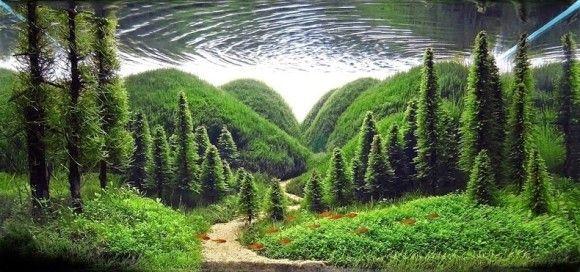 これが水中世界なのか?水槽の中で再現されたファンタジーな森の世界。「ネイチャーアクアリウム」 : カラパイア