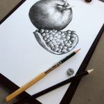 """Pomegranate illustration for the illustrated series """"Hand drawn Fruit Collection"""". Graphite on paper. Digital file available for sale for commercial use here: https://crmrkt.com/8dgmy Thank you for visiting, Nado"""