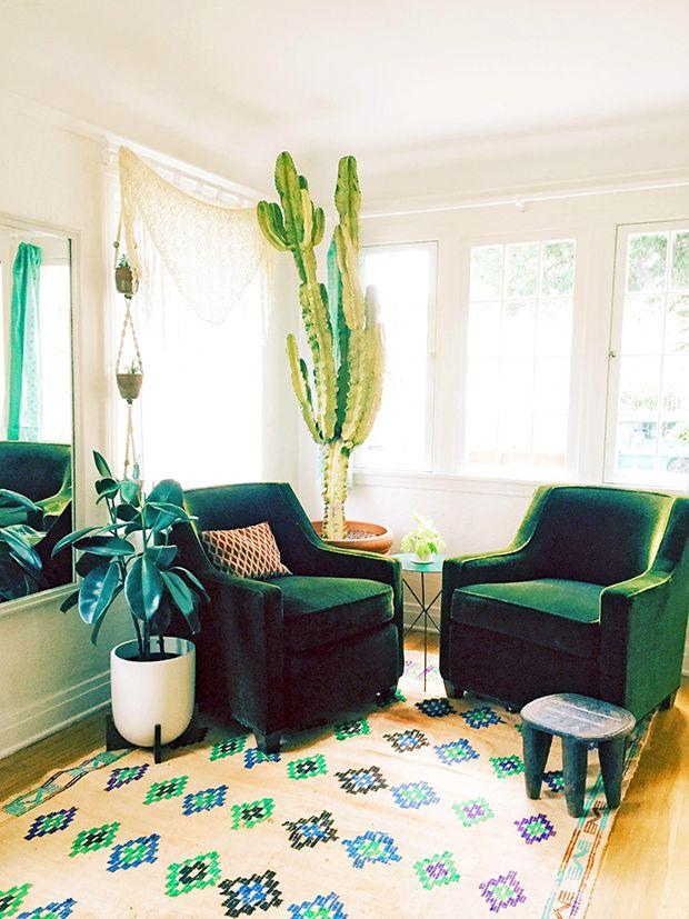 Living room update: Euphorbia = Euphoria