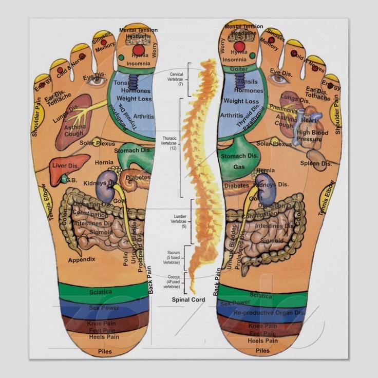 FIREBERT: Reflex points, hands, feet and face.  |Acupressure Points Chart Toes
